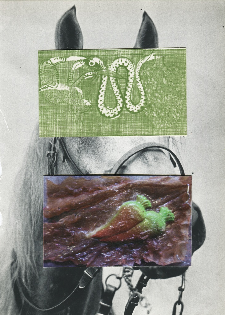 collage 6